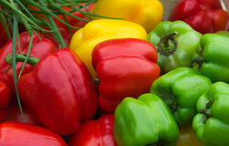Sweet bell peppers. Red, yellow and green bell peppers Royalty Free Stock Photography
