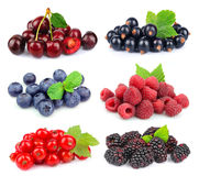 Sweet berries Stock Photos