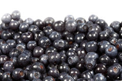 Sweet berries bilberries ( whortleberries ) Royalty Free Stock Photos