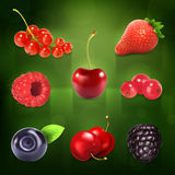 Sweet berries icons Stock Image