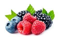 Sweet Berries Mix. Stock Photo