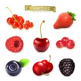 Sweet berries, vector illustration Royalty Free Stock Photography