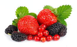 Sweet berry Stock Photos
