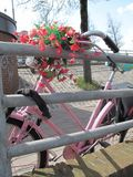 Sweet bicycle. Stock Photos