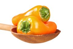 Sweet bite peppers Stock Images