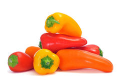 Sweet bite peppers of different colors. Orange, red and yellow, on a white background Royalty Free Stock Image