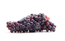 Sweet black grapes Stock Image