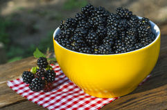 Sweet blackberry in bowl royalty free stock image