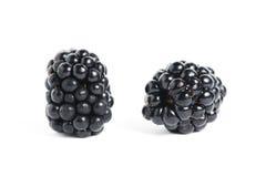 Sweet blackberry isolated on white background. Picture with sweet blackberry isolated on white background Royalty Free Stock Photo