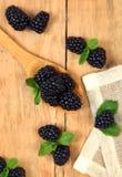 Sweet blackberry Stock Photo