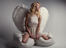 Sweet blond angel. In studio Royalty Free Stock Image