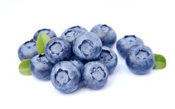 Sweet blueberries Stock Photography
