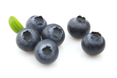 Sweet blueberry Stock Image