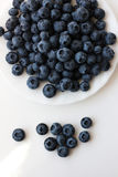 Sweet blueberry Stock Photography