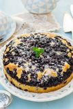 Sweet blueberry butter cake for tea stock photography