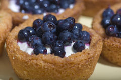 Sweet Blueberry cakes. Homemade Blueberry and white cream cakes. Shallow depth of field with focus to the center stock image