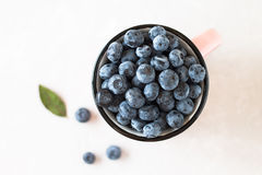 Sweet blueberry in cup with leaf on white table. Stock Photos