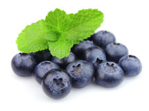 Sweet blueberry with fresh mint Stock Images