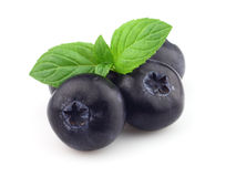 Sweet blueberry with peppermint Stock Images