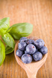 Sweet blueberry Royalty Free Stock Photography