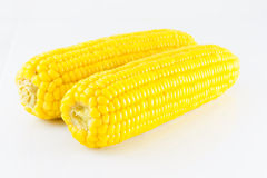 Sweet boiled corn on white background Stock Photos