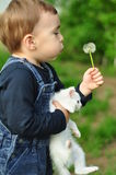Sweet boy hugging a white cat Royalty Free Stock Images