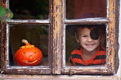 Sweet boy with pumpkin in a costume. Dressed for Halloween Stock Photography