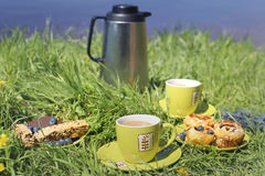 Sweet breakfast picnic on the grass near water. Stock Image