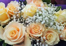 Sweet Bright & Attractive Peach Rose Flowers Bouquet stock image