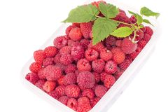 Sweet tasty ripe raspberries with green leaf in plastic box, isolated on white background. Sweet bright tasty ripe raspberries with green leaf in plastic box Royalty Free Stock Image