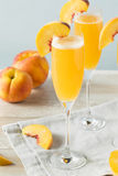 Sweet Bubbly Peach Bellini Mimosa Royalty Free Stock Photography