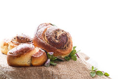 Sweet bun with nut filling in powdered sugar Royalty Free Stock Photos