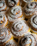 Sweet buns background Royalty Free Stock Photos