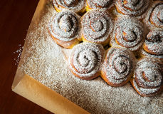 Sweet buns with Powdered sugar on paper Stock Photo