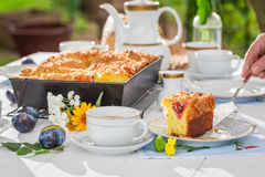 Sweet cake with plum served with coffee in summer Stock Photography