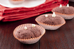 Sweet cakes. Traditional russian cakes with cacao Stock Images