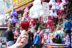 Sweet candy apple on county fair or festival. red candy apple covered in red caramel, at holiday vacation event or amusement park. Sweet candy apple on county royalty free stock images