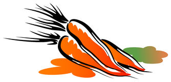 Sweet carrots stock illustration