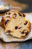 Sweet challah bread with chocolate and cranberries Royalty Free Stock Photography
