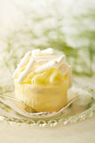 Sweet champagne pie royalty free stock photo