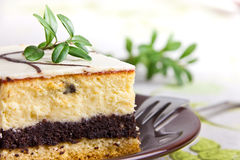 Sweet cheesecake with poppy seed Royalty Free Stock Images
