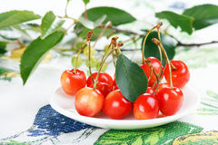 Sweet cherries Royalty Free Stock Images