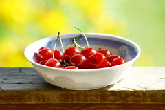 Sweet cherries. Sweet red cherries. Freshly picked heap of cherries stock photos