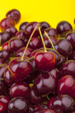 Sweet cherries. Studio-shot of fresh sweet cherries on a yellow background Stock Photography