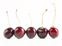 Sweet cherries Stock Photography
