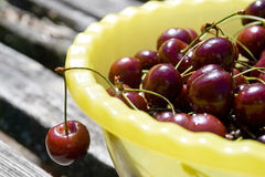 Sweet cherries. In bowl at summer Royalty Free Stock Images
