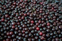 Sweet cherries background. Background of sweet and fresh organic dark cherries Stock Images