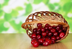 Sweet cherries in basket. Heap of sweet cherries which dropped out of a basket, on a table Stock Photos