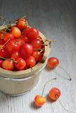 Sweet Cherries in Bucket Stock Photos