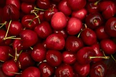 Sweet Cherries Stock Image